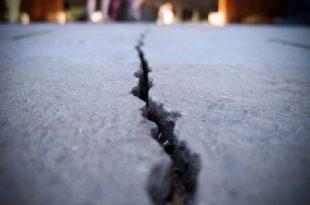 mantarlar betonun kendi catlaklarini onarmasina yardim edebilir 310x205 - Mantarlar Betonun Kendi Çatlaklarını Onarmasına Yardım Edebilir