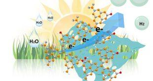 metal icermeyen fotokatalistlerin verimliligini arttiran nanoyapi 310x165 - Metal İçermeyen Fotokatalistlerin Verimliliğini Arttıran Nanoyapı