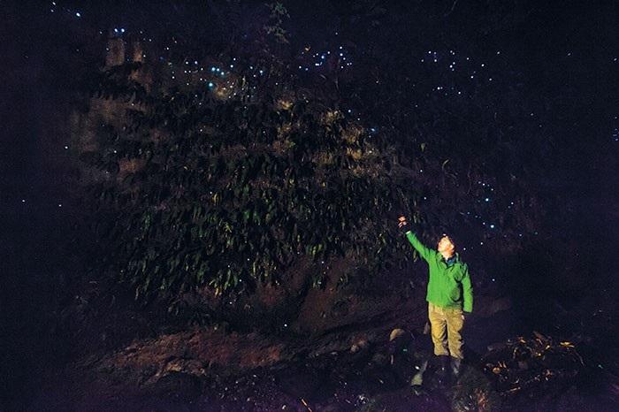 Yeni Zelanda Yıldız Kurtları Tamamen Yeni Bir Lüsiferin Kullanıyor