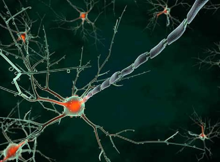 ABD'li Bilim İnsanlarından Alzheimer için Büyük Buluş