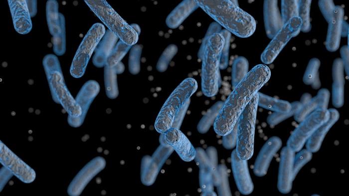 Bilim İnsanları, 30 Yıllık Bakterilerinin Nasıl Yakıt Ürettiği Gizemini Çözdü