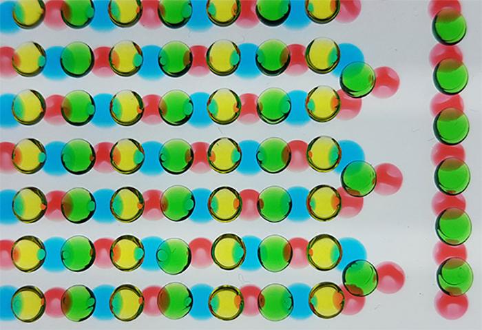 Elektrikli Yılanbalıkları Yeni Bir Güç Kaynağı için İlham Kaynağı Oldular