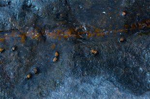 erken dunyanin orta kosullari baska bir yerdeki yasam olasiligini yukseltiyor 310x205 - Erken Dünyanın Orta Koşulları Başka Bir Yerdeki Yaşam Olasılığını Yükseltiyor