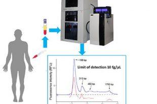kan dolasimindaki dnayi daha hassas bir cihazla tanimlamak 310x205 - Kan Dolaşımındaki DNA'yı Daha Hassas Bir Cihazla Tanımlamak