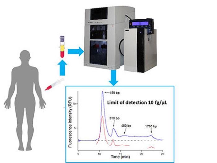Kan Dolaşımındaki DNA'yı Daha Hassas Bir Cihazla Tanımlamak
