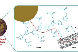 karbon nanotup agi batarya omrunu uzatabilir 310x205 - Karbon Nanotüp Ağı Batarya Ömrünü Uzatabilir