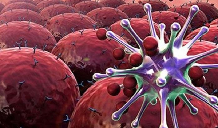 Nanoteknoloji Damarlarımızda Gezecek