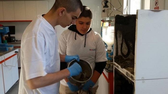 Tübitak'ın Reddettiği Çimento Projesi Harvard Yolunda