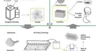 arastirmacilar 3d baski teknolojisinin yardimiyla kisisellestirilmis gidalar uretiyor 310x165 - Araştırmacılar 3D Baskı Teknolojisinin Yardımıyla Kişiselleştirilmiş Gıdalar Üretiyor
