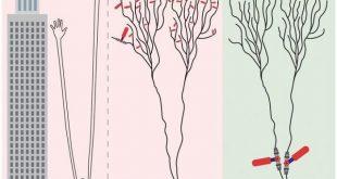 beyin 20 yydan beri farz edilenden tamamen farkli bir sekilde ogrenir 310x165 - Beyin 20.yy'dan Beri Farz Edilenden Tamamen Farklı Bir Şekilde Öğrenir