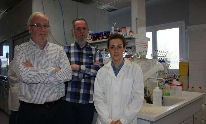 Kanser Hücresi Apoptozunu İndükleyen C9H Peptidi
