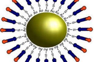 nanoilac ilaclar daha akilli yapilabilir 310x205 - Nanoilaç: İlaçlar Daha Akıllı Yapılabilir