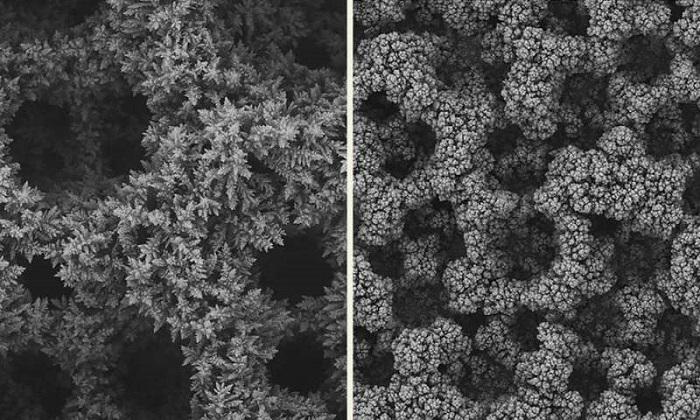 Bu Yöntem Karbondioksitin Monomere Çevrimini İkiye Katlıyor