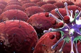 abd kanserin ilerlemesini durduran ilac gelistirdik 310x205 - ABD: Kanserin İlerlemesini Durduran İlaç Geliştirdik