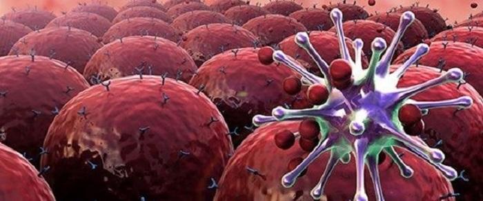 ABD: Kanserin İlerlemesini Durduran İlaç Geliştirdik