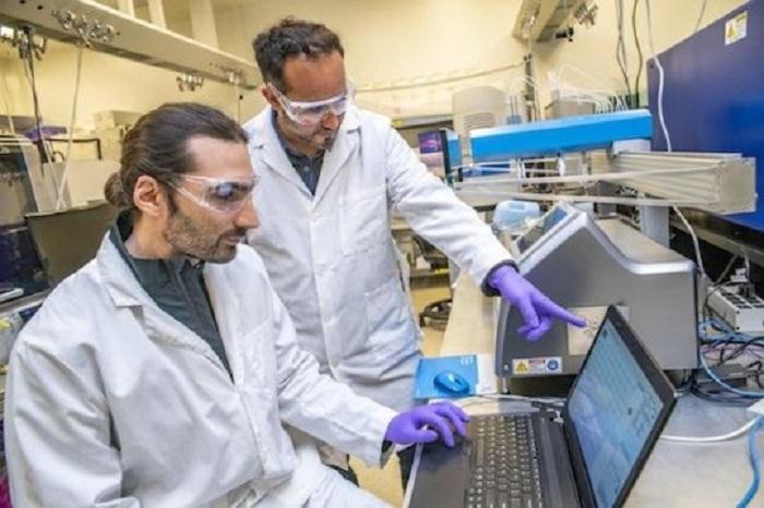 Biyomühendislikte Yapay Zeka Yaklaşımı