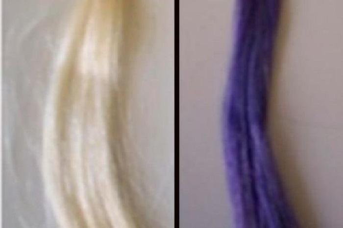 Frenk Üzümü Boyası Saç Boyamayı Daha Güvenli, Daha Sürdürülebilir Hale Getirebilir