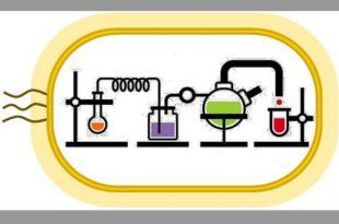 kendi kendini surduren kimyasal reaksiyon donguleri ilac uretimini degistirebilir 310x205 - Kendi Kendini Sürdüren Kimyasal Reaksiyon Döngüleri, İlaç Üretimini Değiştirebilir