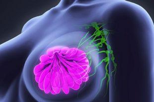 vucudun kanserli hucreleri yemesini saglayan bir ilac gelistirildi 310x205 - Vücudun Kanserli Hücreleri Yemesini Sağlayan Bir İlaç Geliştirildi