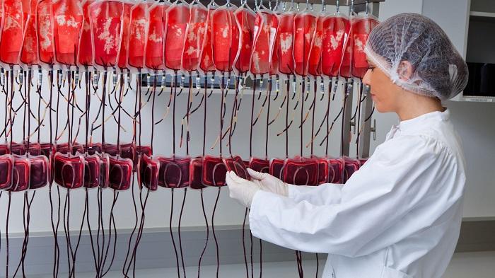 Bilim İnsanları, A ve B Tipi Kan Grubunu 0 Kan Grubuna Dönüştürmeyi Başardı
