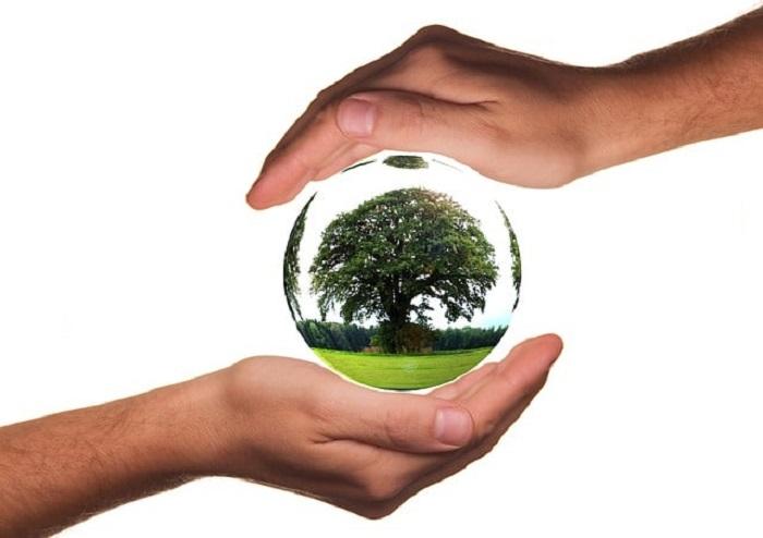 biyolojik cesitliligin korunmasina izin verirken yenilenebilir enerjiden yararlanma - Biyolojik Çeşitliliğin Korunmasına İzin Verirken Yenilenebilir Enerjiden Yararlanma