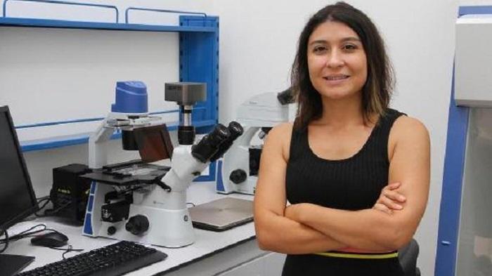kanser tedavisinde ilac direncine karsi yeni adimlar - Kanser Tedavisinde İlaç Direncine Karşı Yeni Adımlar