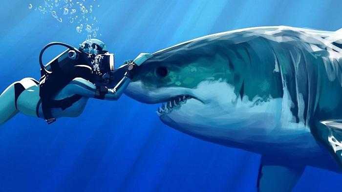 kopek baliklarinin en buyuk dusmani belli oldu miknatislar - Köpek Balıklarının En Büyük Düşmanı Belli Oldu: Mıknatıslar
