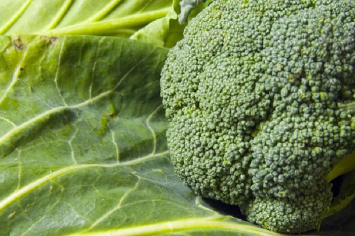 Lahana ve Brokolinin Kanseri Önlediği Kanıtlandı