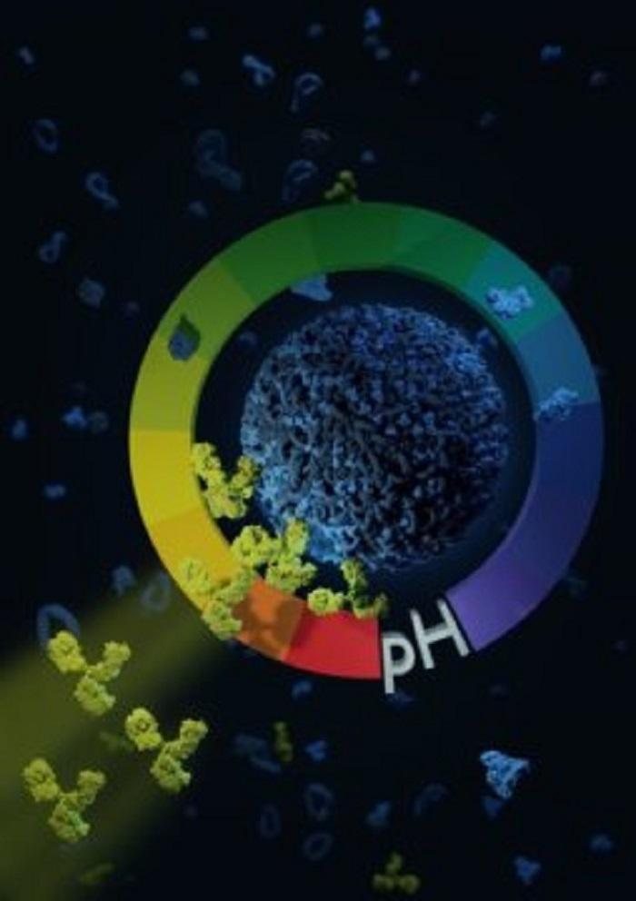 Nano-Sualtı Taşıyıcılarla Baş Ağrıları ve Tümörleri Hedefleme