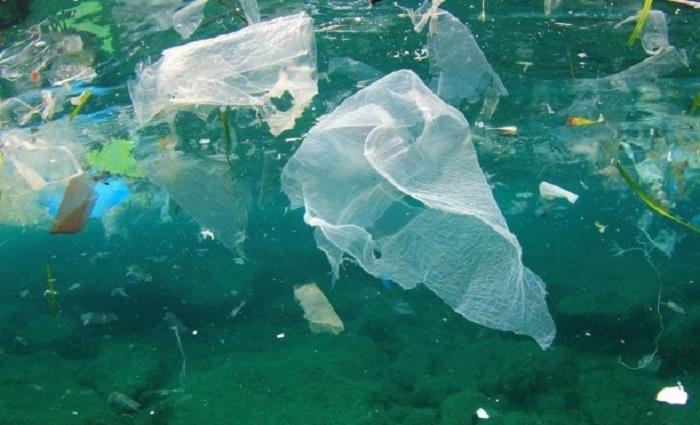 Toprak Bakterileri Bu Plastiği Seviyor