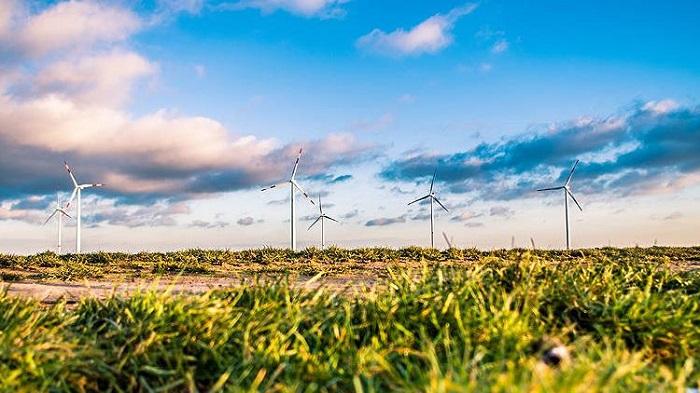 AB'nin Tüketiminde 'Yeşil Enerji'nin Payı Yüzde 30