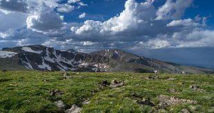 alp ekosistemleri azot birikiminden kurtulma mucadelesi veriyor 310x165 - Alp Ekosistemleri, Azot Birikiminden Kurtulma Mücadelesi Veriyor