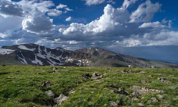 Alp Ekosistemleri, Azot Birikiminden Kurtulma Mücadelesi Veriyor