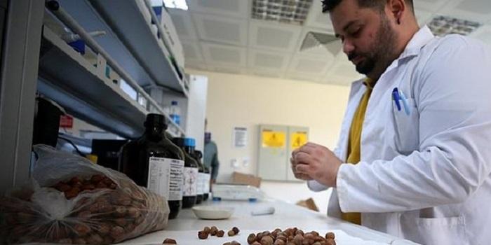 Düzce Üniversitesi'nden Kanser Hastaları için Umut Işığı