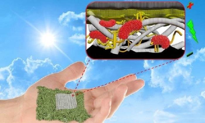 Kağıt Bazlı Biyobozunur Bataryalar