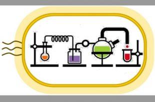 kendiliginden devam eden kimyasal reaksiyon donguleri ilac uretiminde devrim yaratabilir 310x205 - Kendiliğinden Devam Eden Kimyasal Reaksiyon Döngüleri İlaç Üretiminde Devrim Yaratabilir
