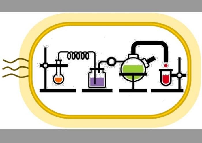 Kendiliğinden Devam Eden Kimyasal Reaksiyon Döngüleri İlaç Üretiminde Devrim Yaratabilir