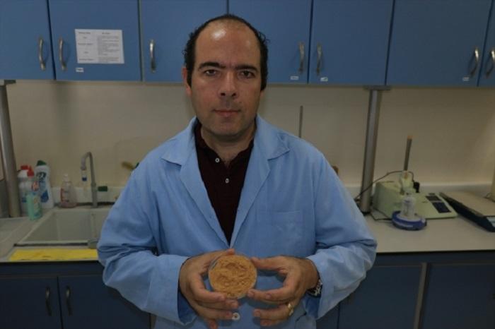 kuru incir kozmetik ilac ve gida endustrisinde kullanilabilecek 2 - Kuru İncir Kozmetik, İlaç ve Gıda Endüstrisinde Kullanılabilecek