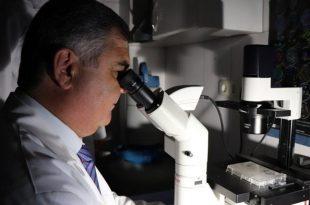 prostat buyumesine karsi bor bilesenli ilac 310x205 - Prostat Büyümesine Karşı Bor Bileşenli İlaç
