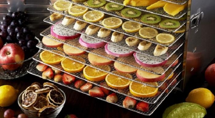 sebze ve meyve kurutmada kullanilan avrupa menseli firinlarin yerlisini uretmeyi basardi - Sebze ve Meyve Kurutmada Kullanılan Avrupa Menşeli Fırınların Yerlisini Üretmeyi Başardı