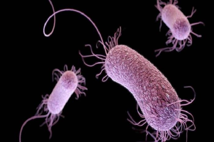 Uzmanlara Göre Aynı Anda Birden Fazla Antibiyotik Alınabilir
