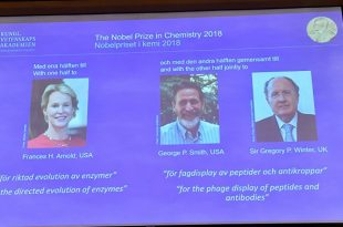 2018 nobel kimya odulunu kazanan isimler belli oldu 310x205 - 2018 Nobel Kimya Ödülünü Kazanan İsimler Belli Oldu