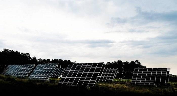 Bilim İnsanları Bulutlu Günlerde Güneş Enerjisini Toplayan Mutant Bakteri Meydana Getirdi