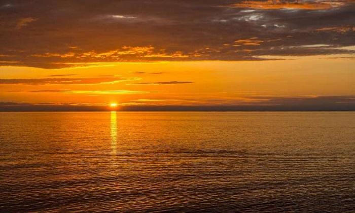 Güneş Koruyuculardaki Kimyasallar Balık Embriyolarına Zarar Verebilir