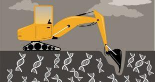 ilac kesfi icin madencilik gen ifadesi verileri 310x165 - İlaç Keşfi için Madencilik Gen İfadesi Verileri