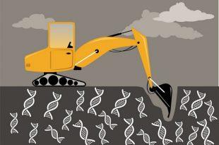 ilac kesfi icin madencilik gen ifadesi verileri 310x205 - İlaç Keşfi için Madencilik Gen İfadesi Verileri
