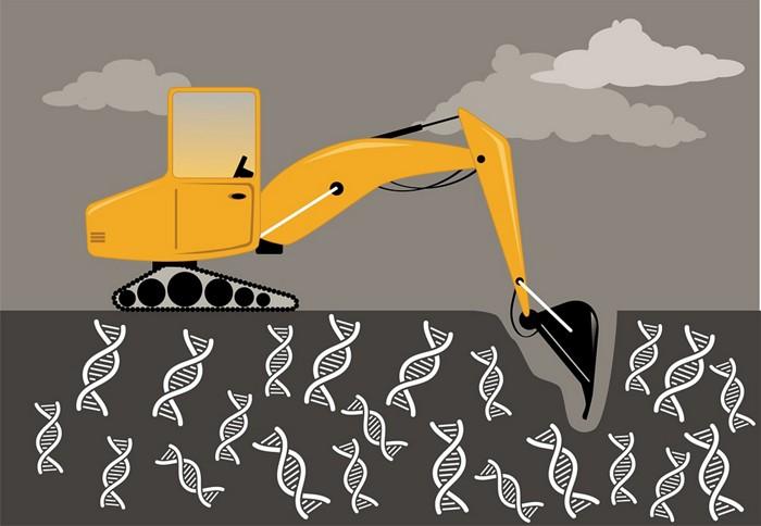 İlaç Keşfi için Madencilik Gen İfadesi Verileri