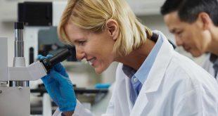 kimya muhendisleri bor nitrurunu diger nanosistemler ile fonsiyonellestirdiler 310x165 - Kimya Mühendisleri, Bor Nitrürünü Diğer Nanosistemler ile Fonsiyonelleştirdiler