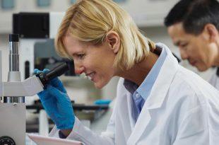 kimya muhendisleri bor nitrurunu diger nanosistemler ile fonsiyonellestirdiler 310x205 - Kimya Mühendisleri, Bor Nitrürünü Diğer Nanosistemler ile Fonsiyonelleştirdiler