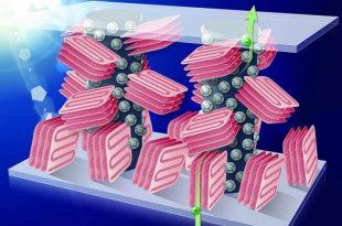 plastik gunes pillerine inert polimer eklenmesi yuksek verimlilik ve kolay uretim sagliyor 310x205 - Plastik Güneş Pillerine İnert Polimer Eklenmesi, Yüksek Verimlilik ve Kolay Üretim Sağlıyor